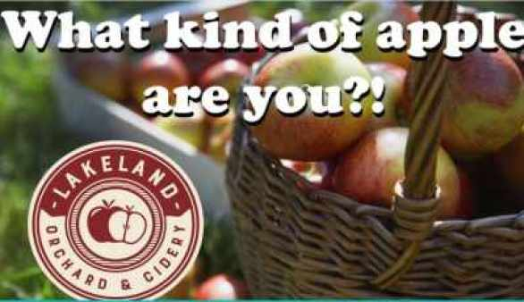 WNEP-Lakeland-Orchard-Contest