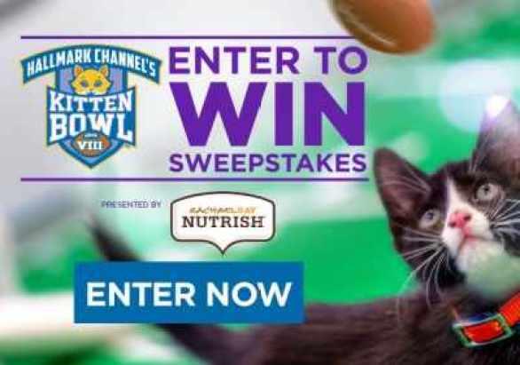HallmarkChannel-Kitten-Bowl-Sweepstakes