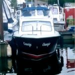 transport Onedin 650 van Sprang-Capelle naar Vinkeveen
