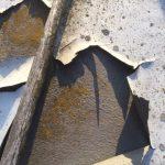 stralen en in epoxy zetten platbodem vollenhovense bol 8 mtr