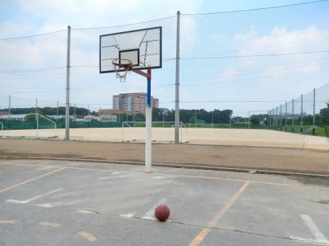 埼玉県のバスケットゴールがある公園「上尾平塚公園サッカー場」