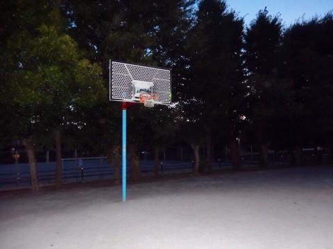 埼玉県さいたま市のバスケットゴールがある公園「大平公園」