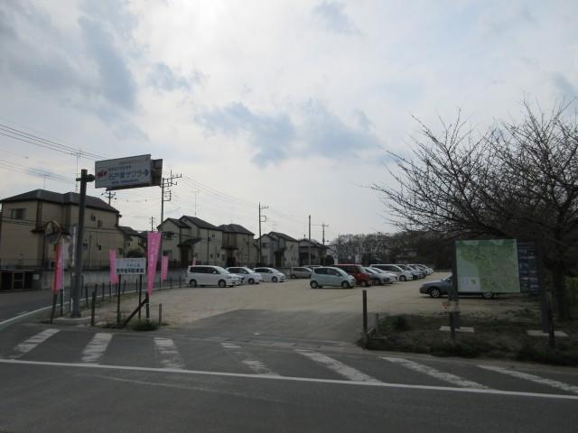 北本にある日本五大桜「石戸蒲ザクラ」⑦