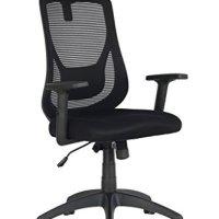 VIVA OFFICE Ergonomic Office Chair, High Back Mesh Chair Executive chair with Adjustable Headrest and Armrest -Viva1168F1