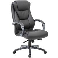 Large Executive Office Chair - Sleek & Neutral Design, Dual Wheel Casters, Leather Plus Fabric, Padded Armrests With Adjustable Back - By Executive Style