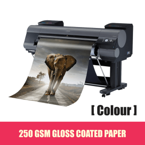 POSTERS PRINTING [ COLOUR ON GLOSS PAPER ]