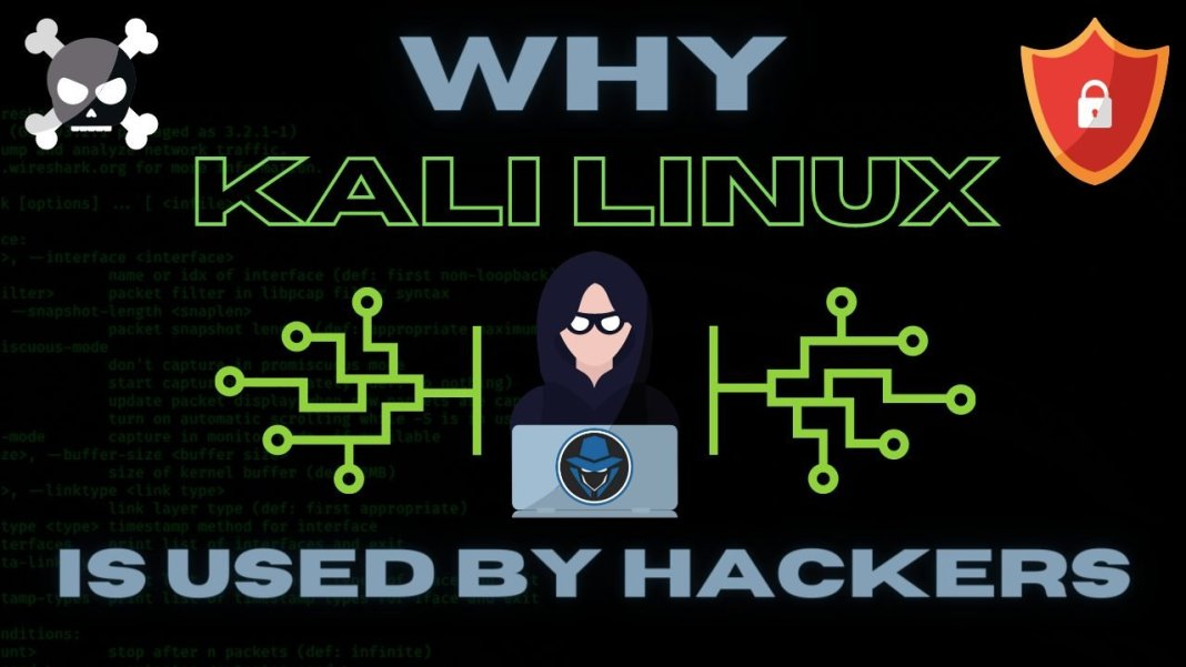 Why Kali Linux is Mostly Used by Hackers - Official Hacker