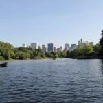 The Lake + New York skyline