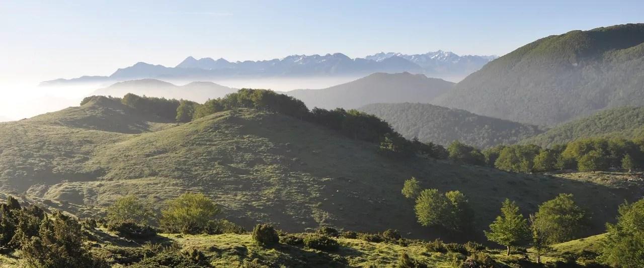reserve-naturelle-pibeste-argeles-gazost_0