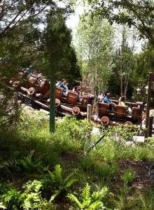Seven Dwarfs Mine Train - Orlando Fun & Food