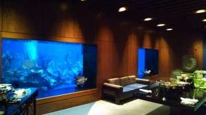 Giant windows located in the venue look into The Living Seas tank