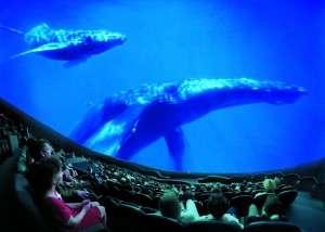 Orlando Science Center CineDome