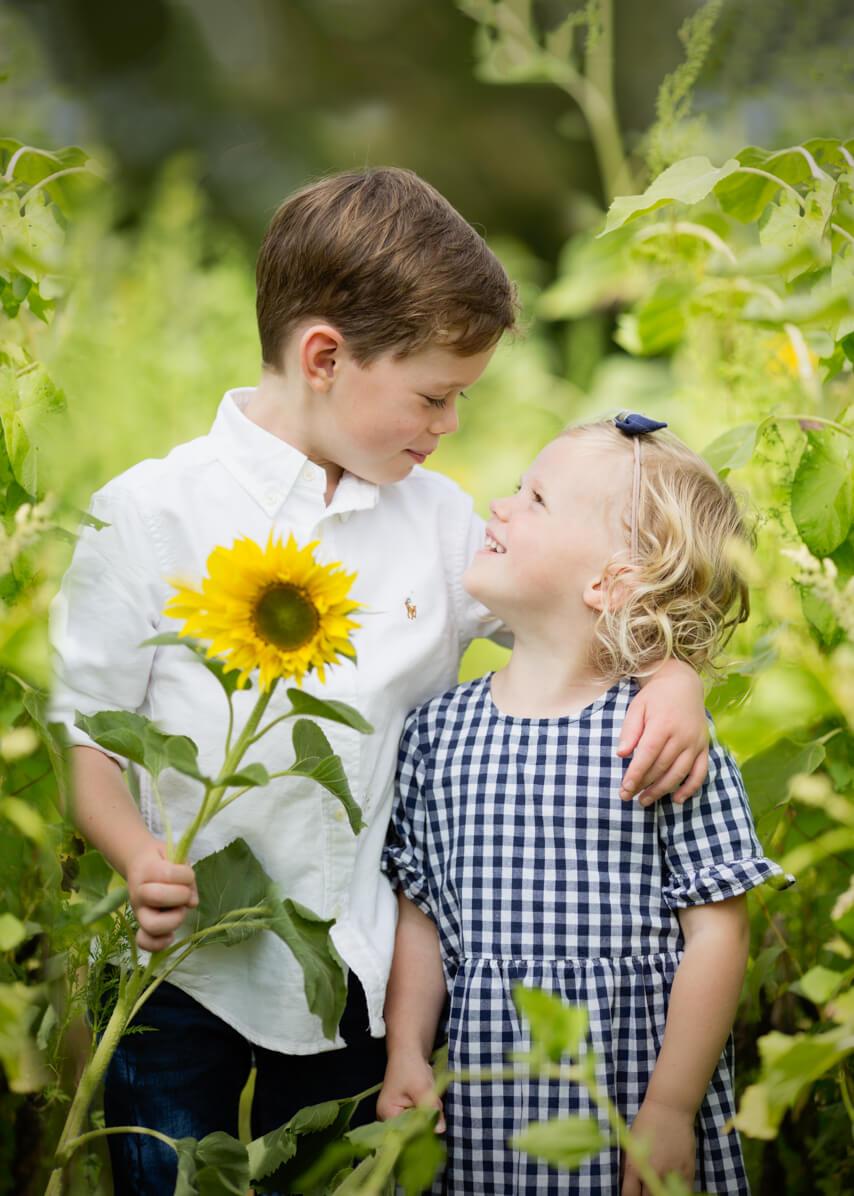 Sunflower field photoshoot in Warwickshire