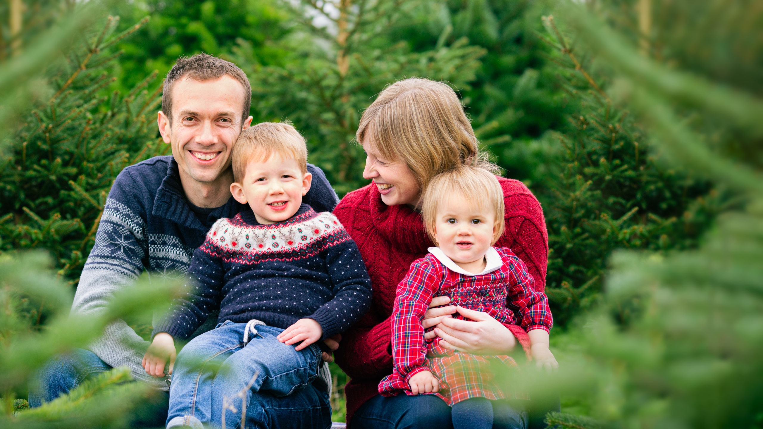 Christmas Tree Farm photoshoot experience 2021 in the Cotswolds and Warwickshire