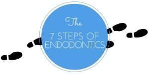 the 7 steps of endodontics