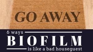 7 ways biofilm is like a bad houseguest
