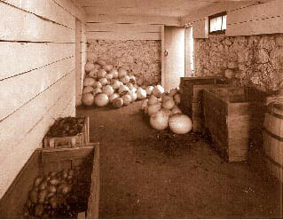 root_cellar