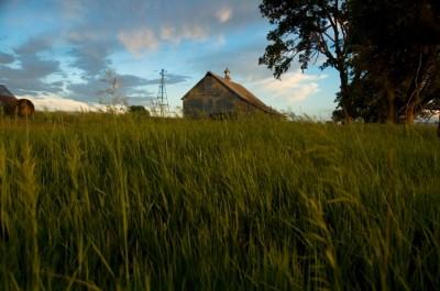 debt self-sufficiency homestead