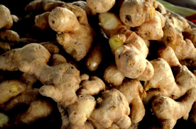 How To Grow (And Harvest) Ginger Indoors ... Without Killing It
