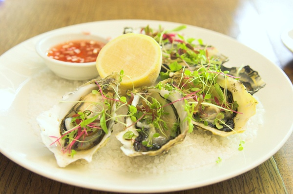 The European: oysters