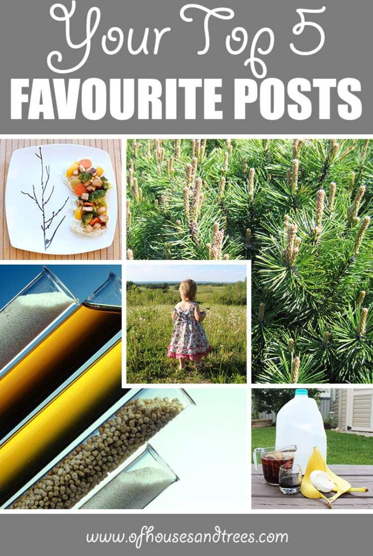 Favourite Blog Posts | Happy anniversary to me and Of Houses and Trees! Here are the top five favourite blog posts that received the most visits since March 31, 2016.