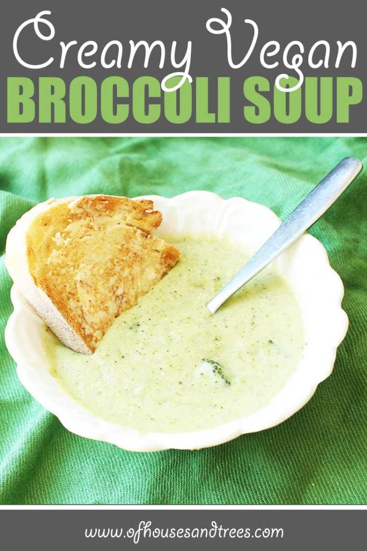 Healthy Broccoli Soup | Thick and creamy vegan broccoli soup... without the cream. Safe for vegans, lactose-intolerants and calorie counters alike. And it's delicious too!