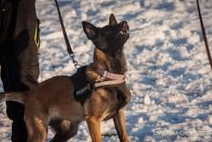 og-krumbach-trainingsbetrieb-2018-02-24-418