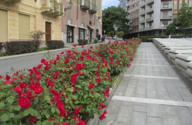 Due iniziative in programma martedì e Giovedì ad Acqui Terme