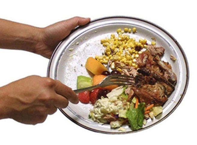 A Tortona si preferisce gettare il cibo piuttosto che darlo ai cani? Fiumi di email, ma né Comune, né garante degli animali rispodono