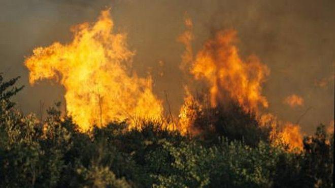 Sempre in vigore a Tortona il divieto di combustione residui vegetali