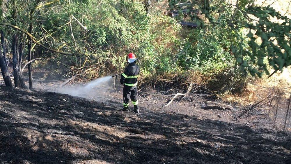 Viguzzolo, incendio in un boschetto dietro la ex ROL: ingente lavoro dei pompieri: quasi 7 ore di interventi