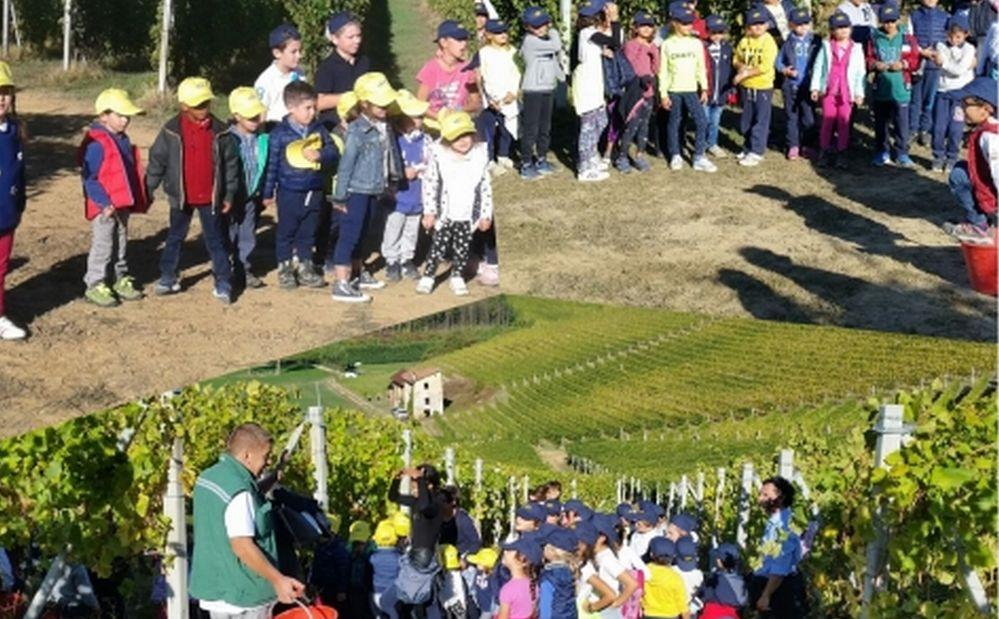 A Novi Ligure Open Day alla scuola bilingue Kidschool
