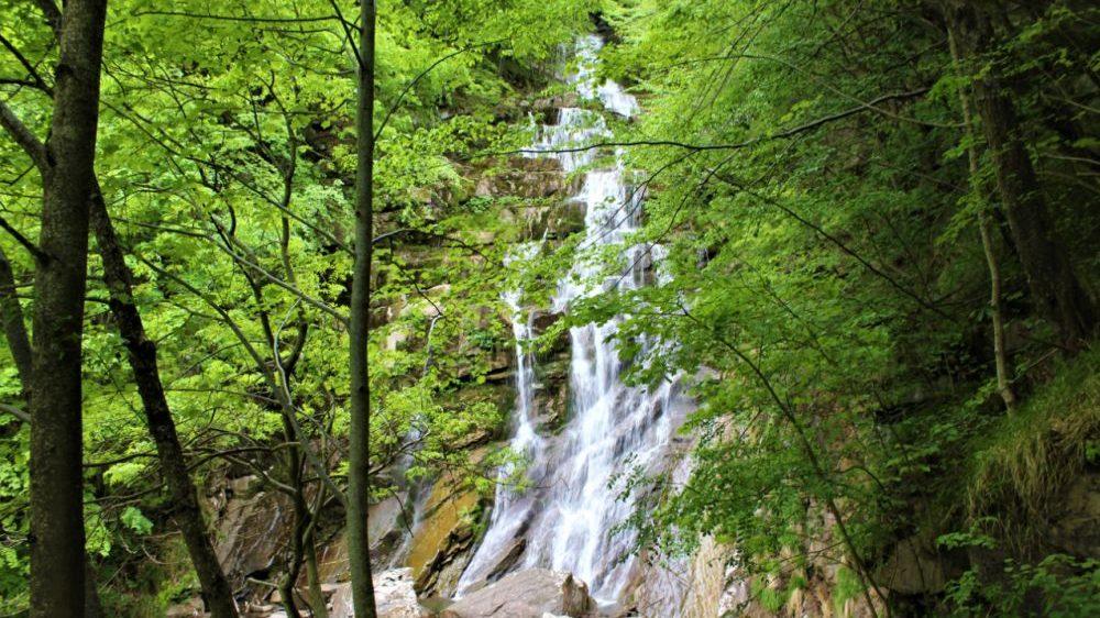Le manifestazioni in programma nel week end nei Comuni del parco delle Alpi liguri