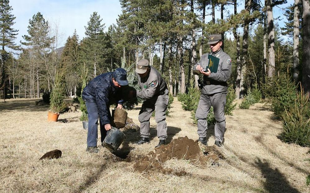 Incredibile ma vero: dopo 7 anni la Regione Piemonte torna ad assumere forestali sul territorio
