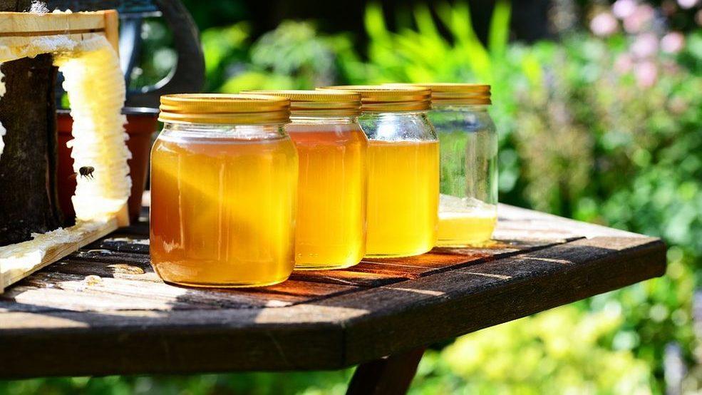 Alessandria, il maltempo non ha risparmiato gli alveari e fatto soffrire le api, compromessa l'acacia