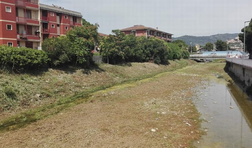 A Diano Marina le pulizie nel Torrente San Pietro fatte fuori tempo ammazzano gli animali