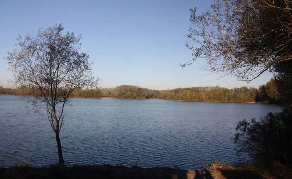Venerdì 8 novembre c'è Insieme al Po: rivivere il fiume a Casale Monferrato e nel casalese