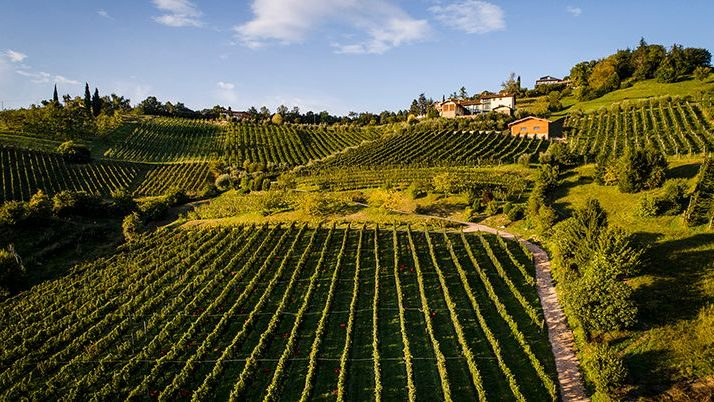 Strada del Vino Valcalepio  meta del turismo: quello che non fa a sufficienza la Strada del vino dei colli tortonesi….
