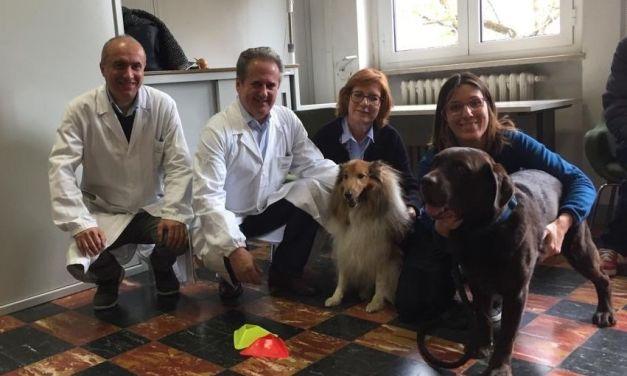 All'ospedale di Casale concluso il progetto di psicoterapia con animali