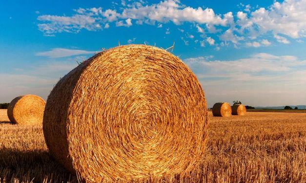 Emergenza agricoltura: un incontro pubblico dei Grillini a Castelnuovo Scrivia