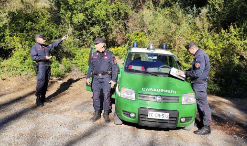 A Brignano Frascata realizzano una recinzione senza autorizzazione, denunciati dai Forestali