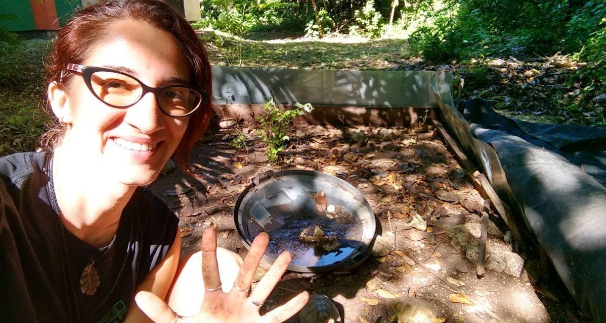 La biologa tortonese Francesca Cassola fa un'incredibile scoperta scientifica sulle tartarughe in Messico