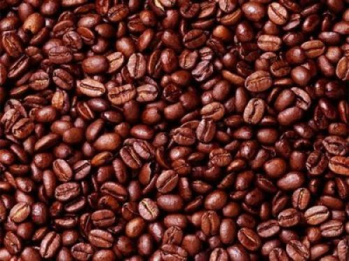 How You Can Transform Cocoa Beans to Chocolate