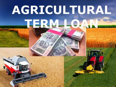 Securing an Agricultural Loan