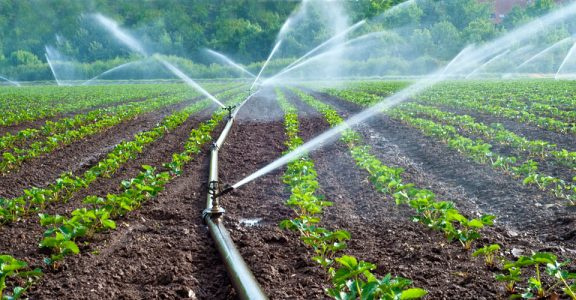 Agriculture Water Use- Types