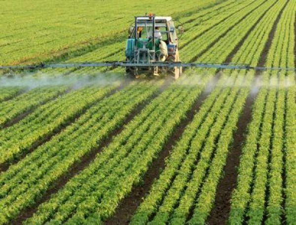 Types Of Herbicides Used On Plants And How They Work