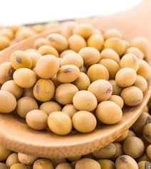 Uses of Soybeans