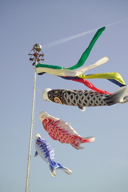 Koinobori - Golden Week