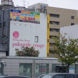 Palourde Rouge