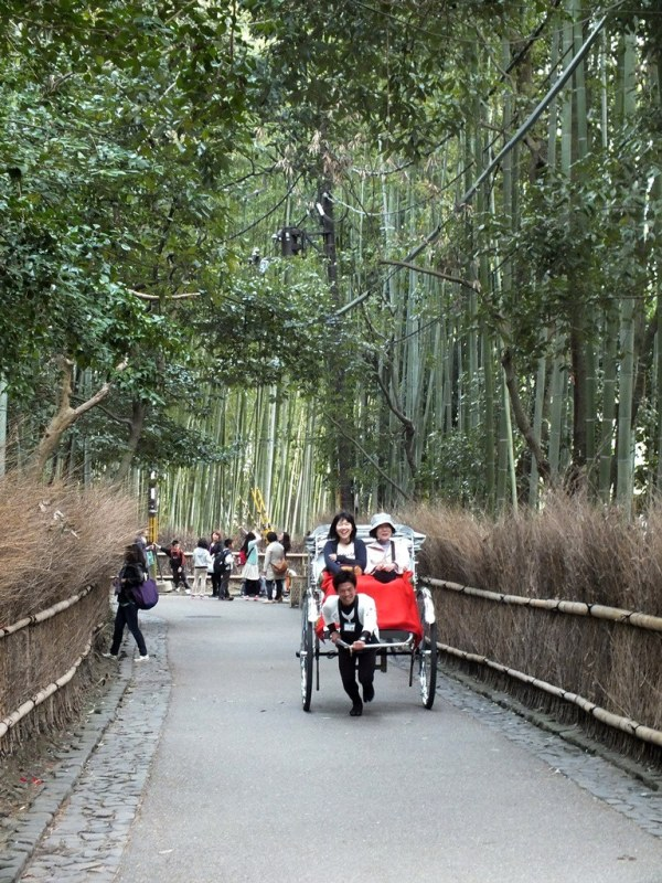 Bambous Arashiyama - 6